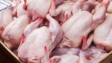 تصویر از قیمت مصوب مرغ افزایش یافت