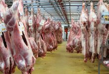تصویر از معاون بازرگانی صمت:فروش گوشت گوساله بیش از ۱۴۰ هزار تومان گرانفروشی است