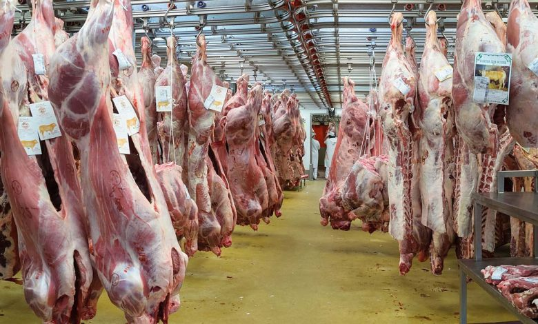 گوشت گوساله