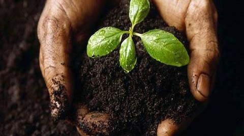 حفاظت از خاک