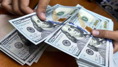 تصویر از دلار همچنان در کانال ۲۰ هزار تومان/ نرخ ارز ثابت ماند