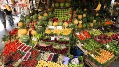 تصویر از کدام میوه تابستانی شکم سیر کن است!
