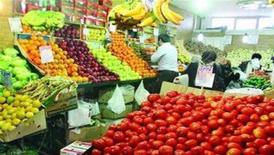 تصویر از ستاد تنظیم بازار: دلیل افزایش قیمت میوه صادرات است