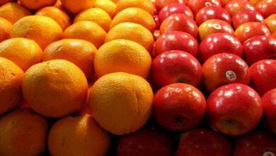 تصویر از دبیر ستاد تنظیم بازار: قیمت سیب و پرتقال تا پایان ماه رمضان افزایش نمی یابد