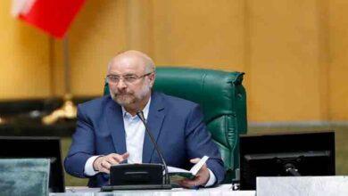تصویر از مجلس هیچگاه تعطیل نیست/ مشکلات مردم را پیگیری میکنیم