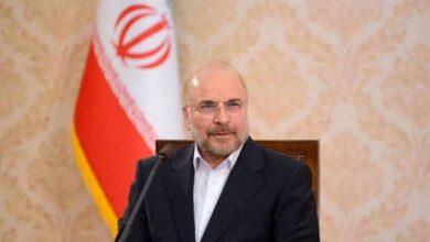 تصویر از رئیس مجلس: حضور نیروهای خارجی در خلیج فارس امنیت منطقه را برهم زده است