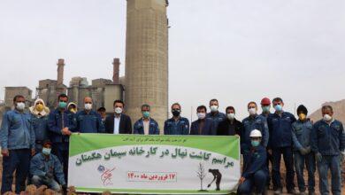 تصویر از کاشت ۱۰۰۰ اصله نهال توسط کارکنان کارخانه سیمان هگمتان به مناسبت آغاز سال جدید و پیوند با طبیعت