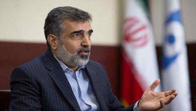 تصویر از سخنگوی سازمان انرژی اتمی: ذخایر اورانیوم ۲۰ درصد ایران به ۵۵ کیلوگرم رسید