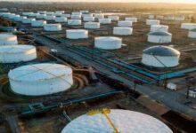 تصویر از قیمت نفت خام تثبیت شد