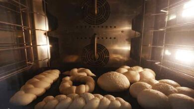 تصویر از پیش بینی تولید ۱۲ میلیون تن گندم در کشور/ افزایش قیمت نان به بهانه گندم تخلف است