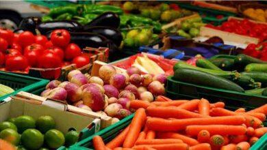 تصویر از صادرات سبزی و صیفی ۲۲ درصد رشد کرد