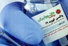 تصویر از رئیس مرکز تحقیقات ویروس شناسی دانشگاه علوم پزشکی شهید بهشتی: «کووایران برکت» برای تزریق عمومی نیازی به مجوز سازمان جهانی بهداشت ندارد
